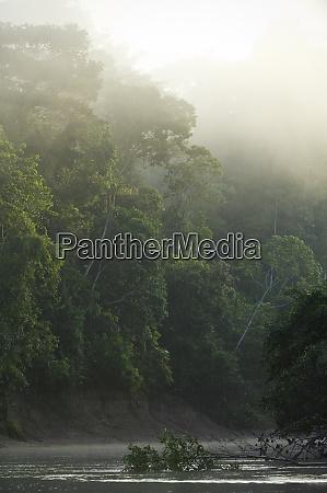 tiputini river scenic yasuni national park
