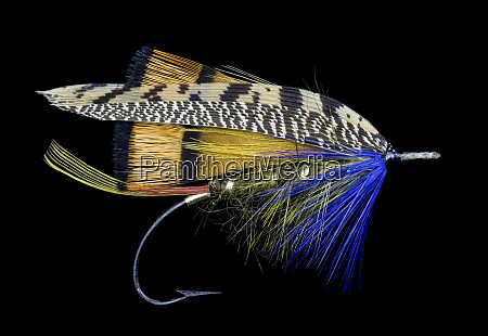atlantic salmon fly designs