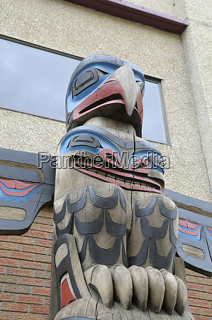 canada british columbia vancouver island eagle