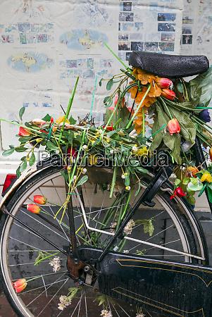 niederlande amsterdam fahrrad mit tulpen bedeckt
