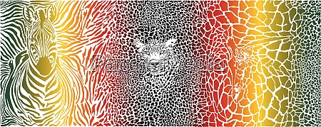 farbmuster hintergrund mit zebra leopard und