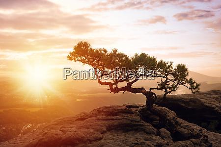 schoener sonnenaufgang in der saechsischen schweiz