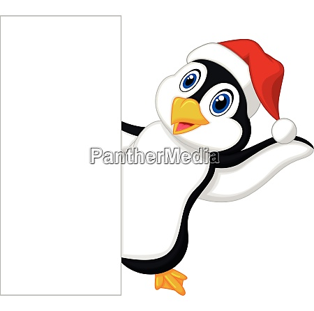 cute penguin cartoon with red hat