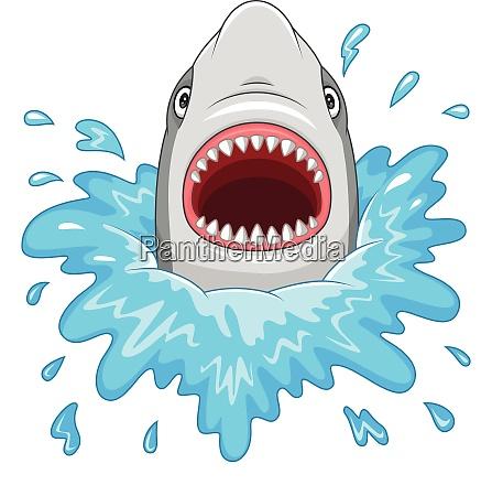 cartoon hai mit offenen kiefern auf