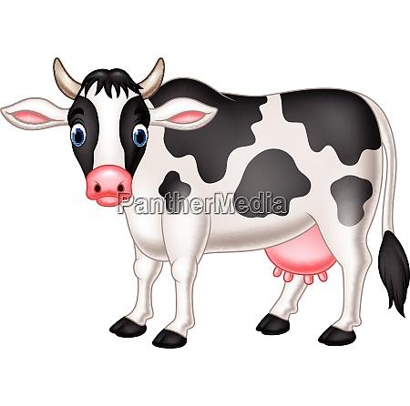 suesse kuh cartoon