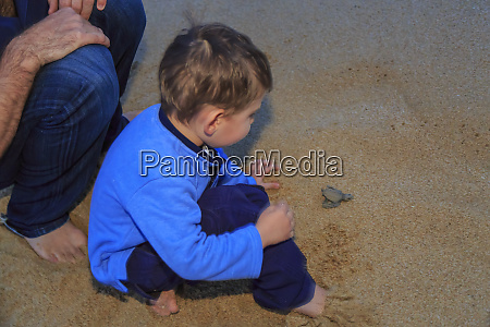 child watching a baby sea turtle