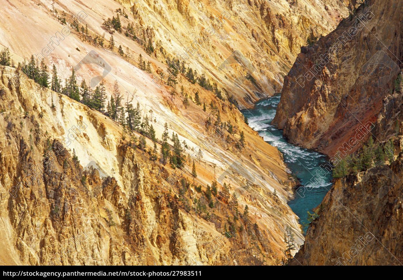 der, yellowstone, river, und, canyon, von - 27983511