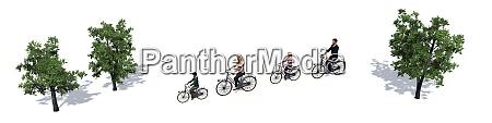 fahrradfamilie radfahrer zwischen tress mit schatten