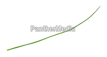 Medien-Nr. 28007218