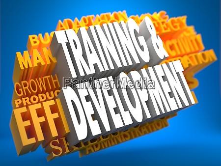 ausbildung und entwicklung wordcloud konzept