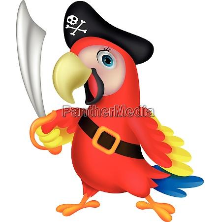 suesse papagei piraten cartoon