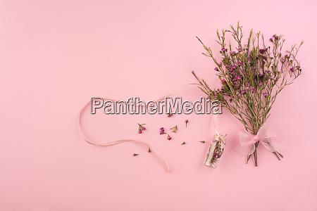 getrocknete blumen auf rosa hintergrund