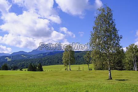 landschaftliche aussicht auf buckelwiesen gegen himmel