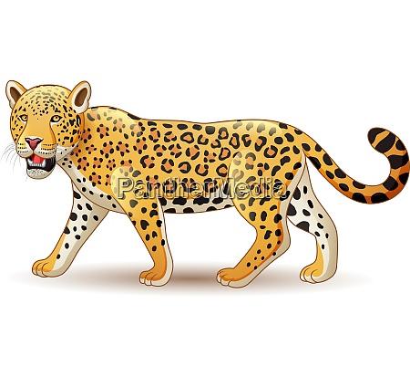 cartoon leopard isoliert auf weissem hintergrund
