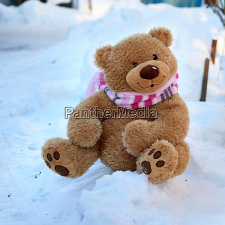 grosse suesse lockige teddybaer in einem