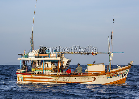 die sri lankischen fischer ziehen ihr