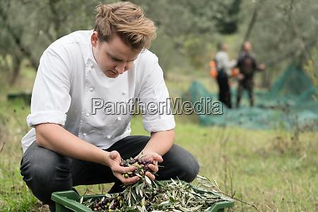 kuechenchef inspiziert qualitaet der oliven waehrend