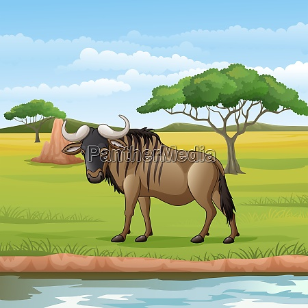 cartoon gnus in der savanne