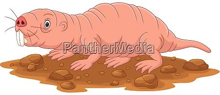 cartoon nackt maulwurf ratte laechelnd