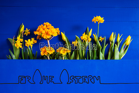 spring flowers tulip narcissus frohe ostern