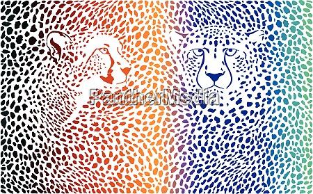 geparden farbiger hintergrund mit koepfen
