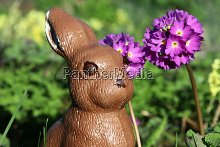 a chocolate easter bunny in the