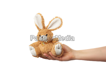 weibliche hand haelt ein kleines braunes