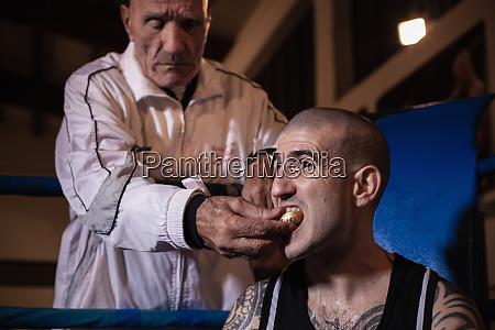 boxtrainer entfernt mundschutz von taetowierten boxer