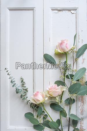 floristik auf weissem vintage holzhintergrund