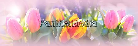 Medien-Nr. 28207405