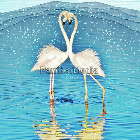 close up of two flamingos madly