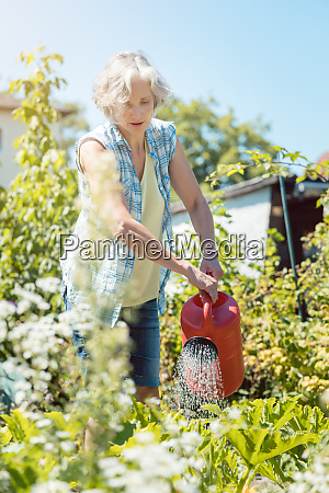 bestager woman watering plants in her