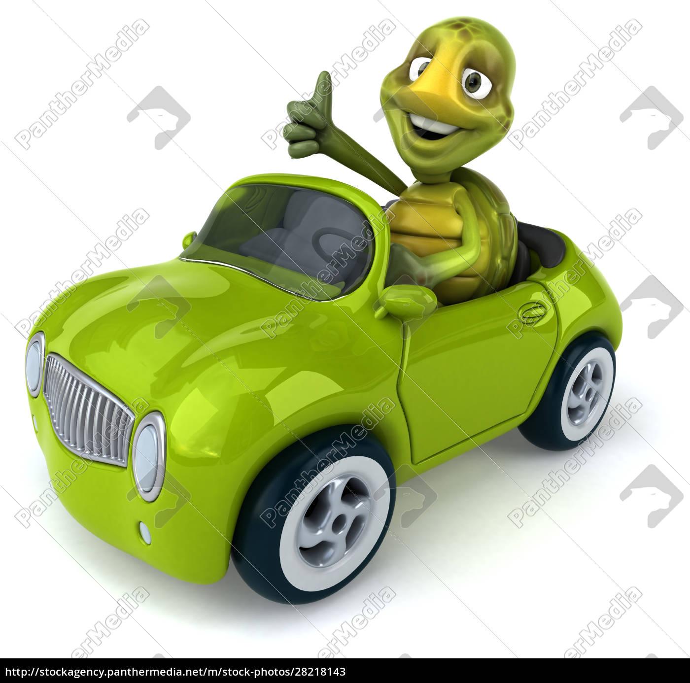 fun, turtle - 28218143