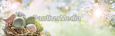 ostereier auf sonnigem fruehlingshintergrund