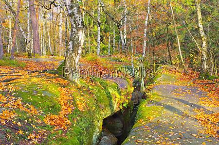 labyrint im elbesandsteingebirge im herbst