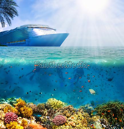 collage von unterwasser korallenriff auf see