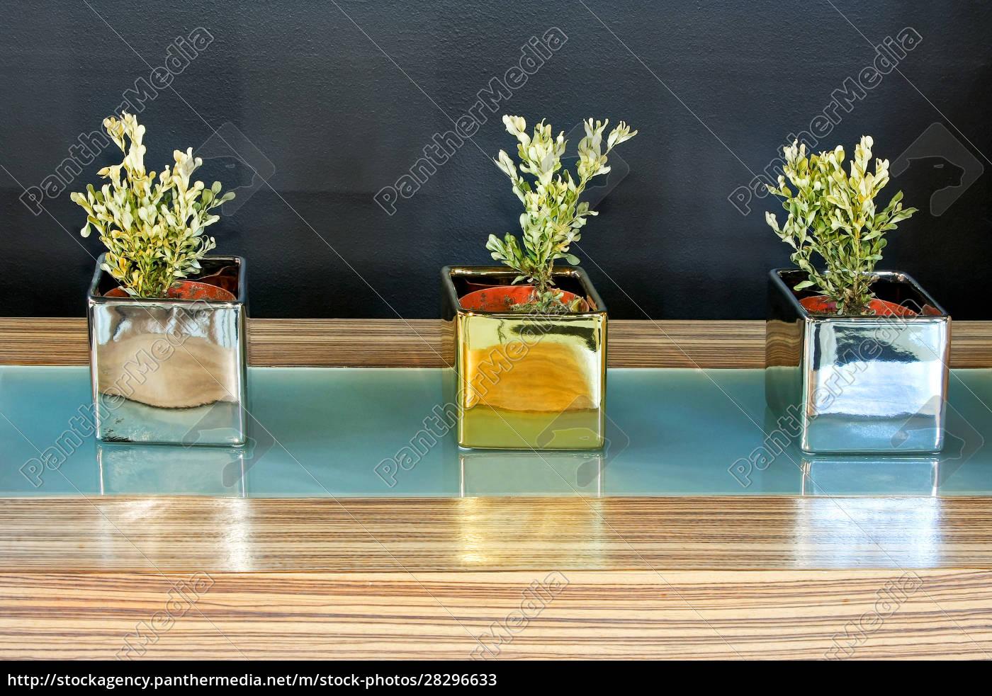 drei, pflanzen - 28296633
