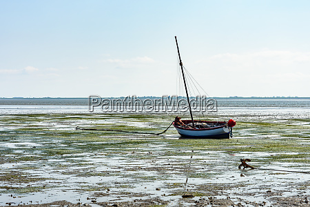boot am wattenmeer bei low tide