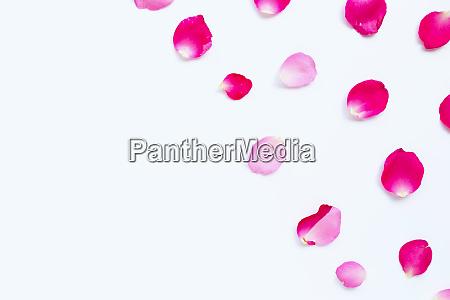 Medien-Nr. 28401349