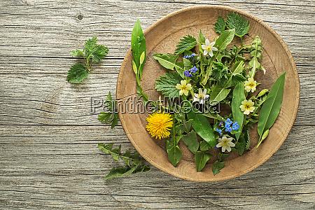 frühlingspflanzen, nahrung - 28403856