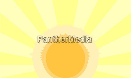 Medien-Nr. 28412970