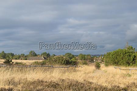 landschaft, an, der, nordsee - 28420110