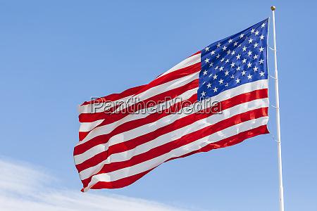 amerikanische flagge weht im wind am