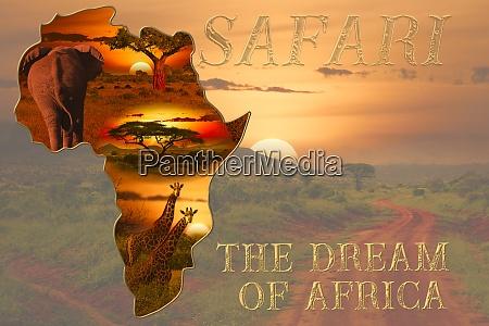 sonnenuntergang und sonnenaufgang in afrika mit