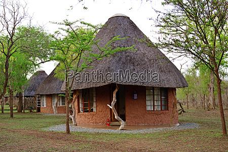ndlovu camp hlane royal nationalpark swasiland