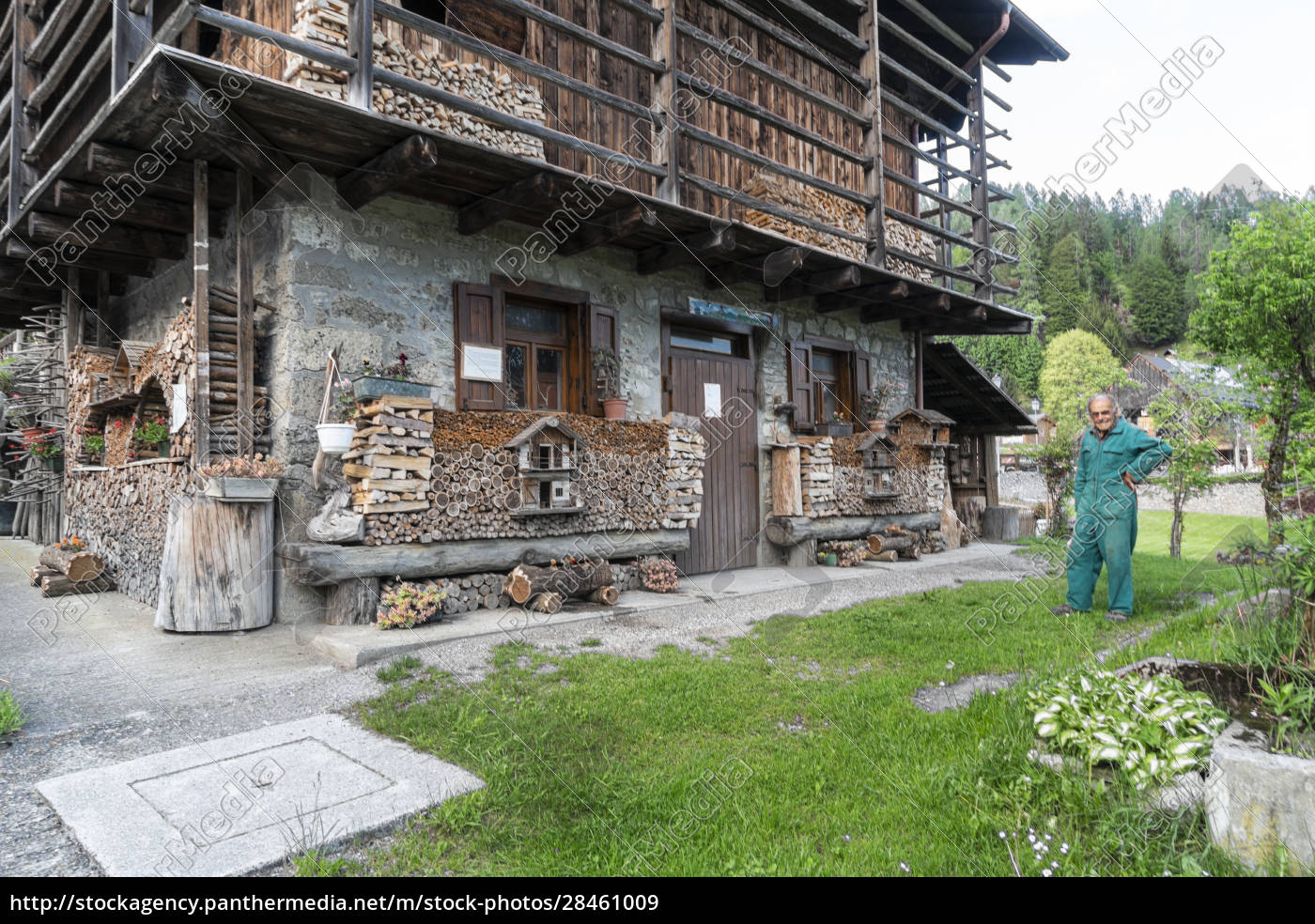 typical, alpine, wooden, house, in, sauris, - 28461009