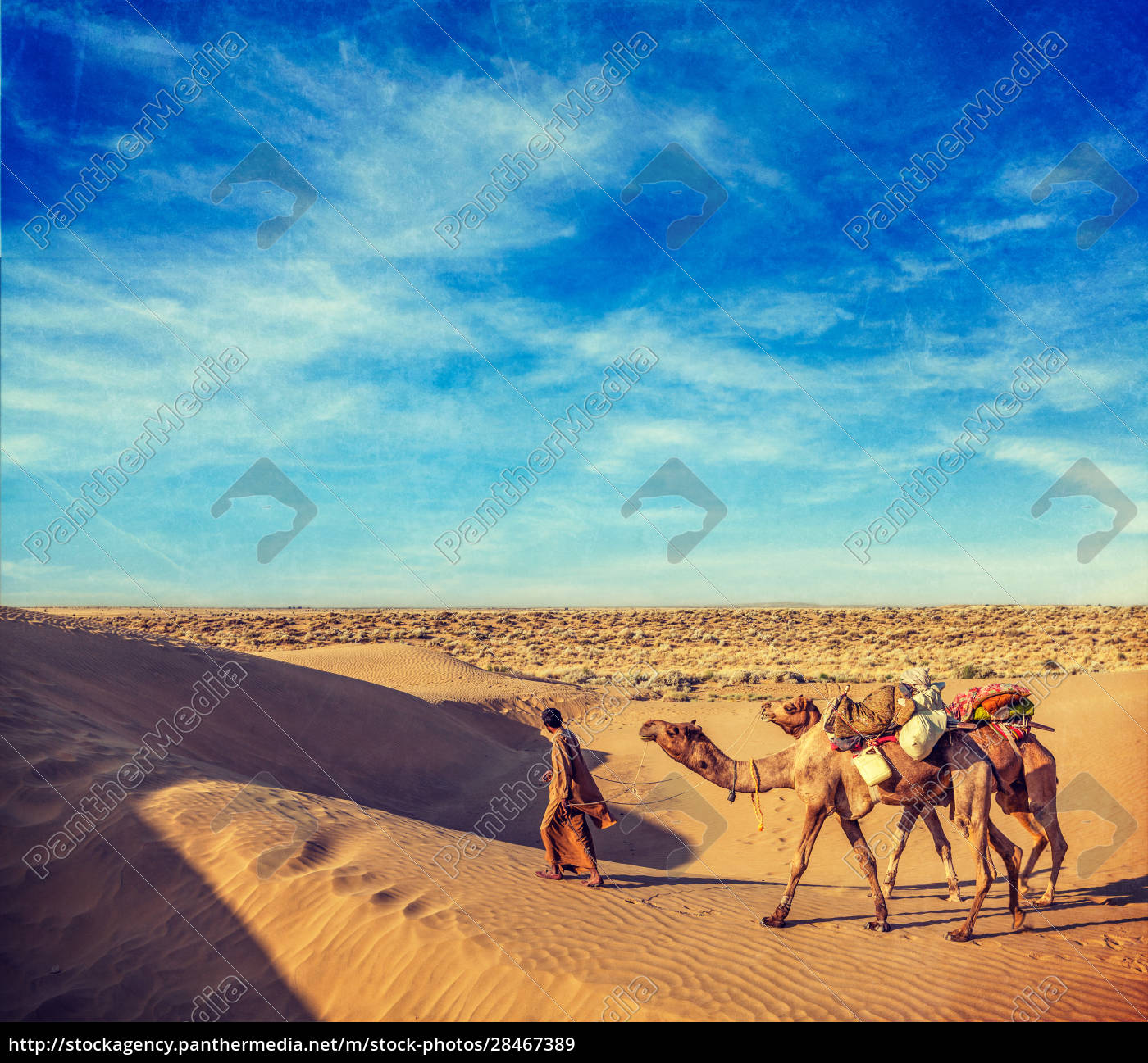 cameleer, (kamelfahrer), mit, kamelen, in, dünen - 28467389