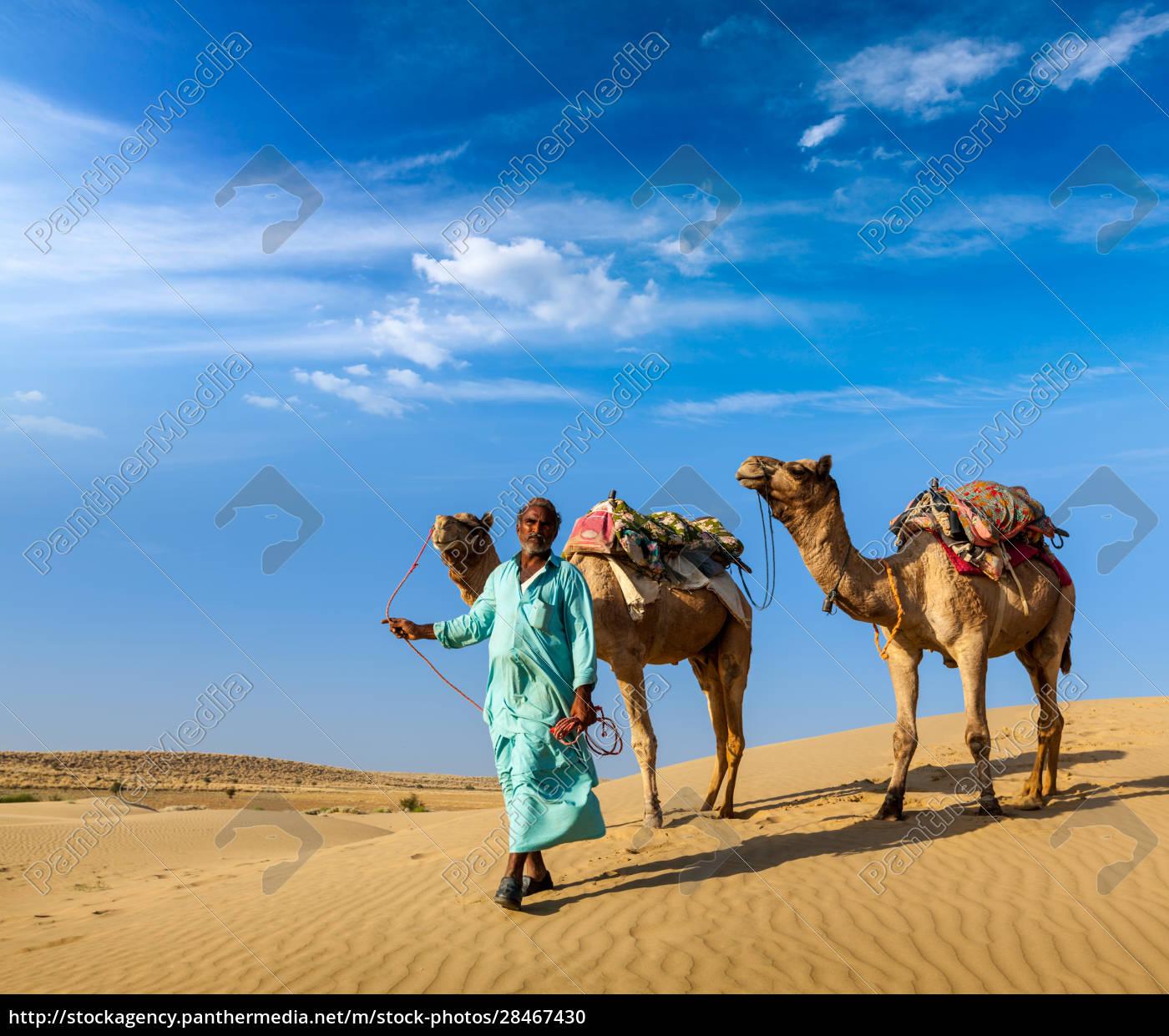 cameleer, (kamelfahrer), mit, kamelen, in, dünen - 28467430