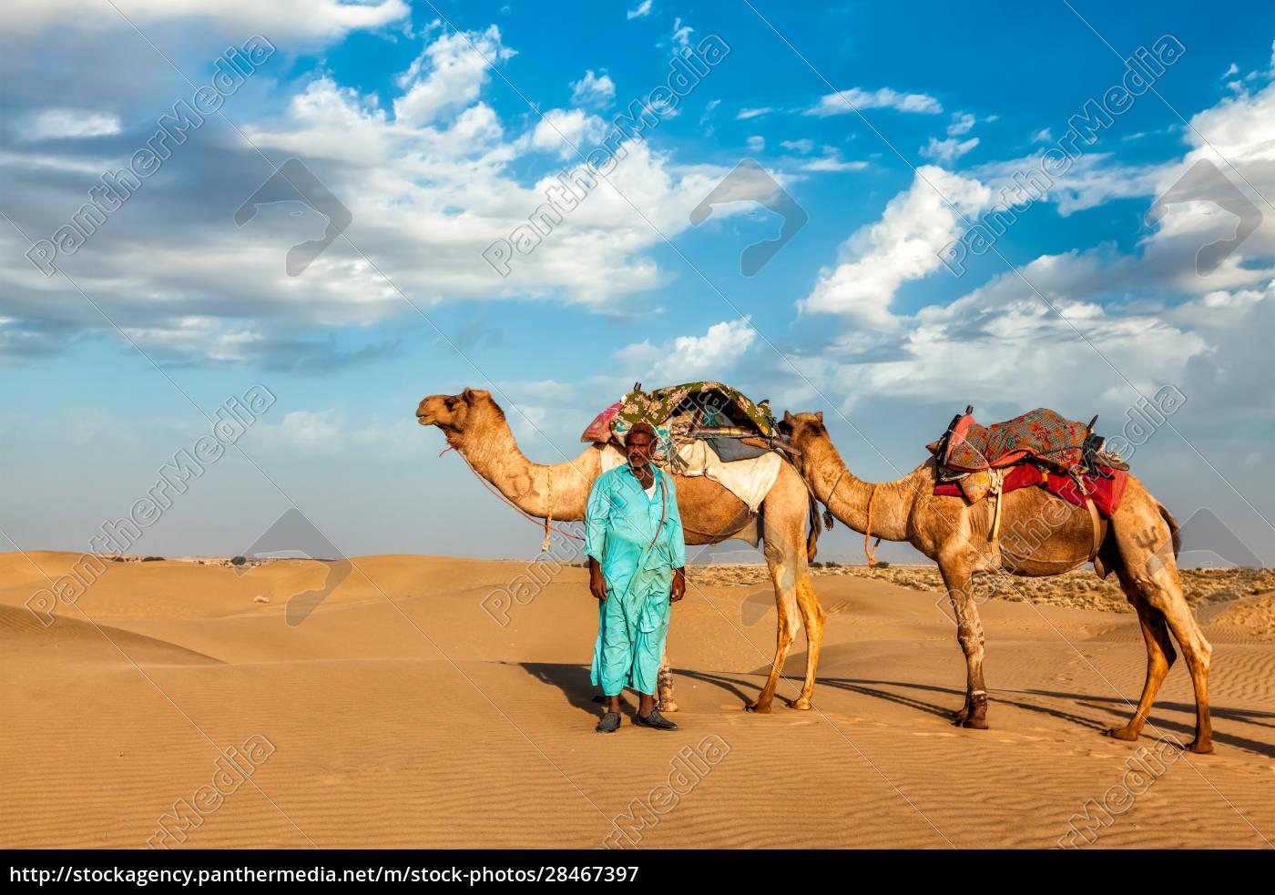 kamel-kameltreiber, mit, kamelen, in, rajasthan, indien - 28467397