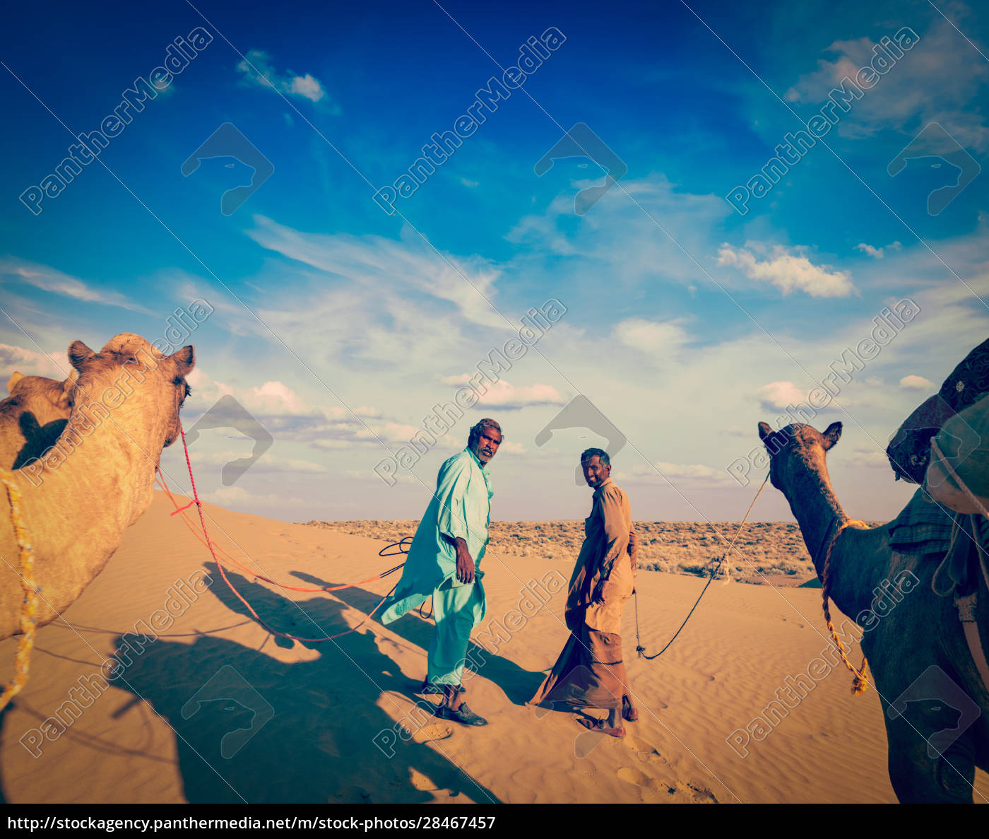 two, cameleers, (camel, drivers), with, camels - 28467457